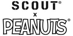 SCOUT PEANUTS